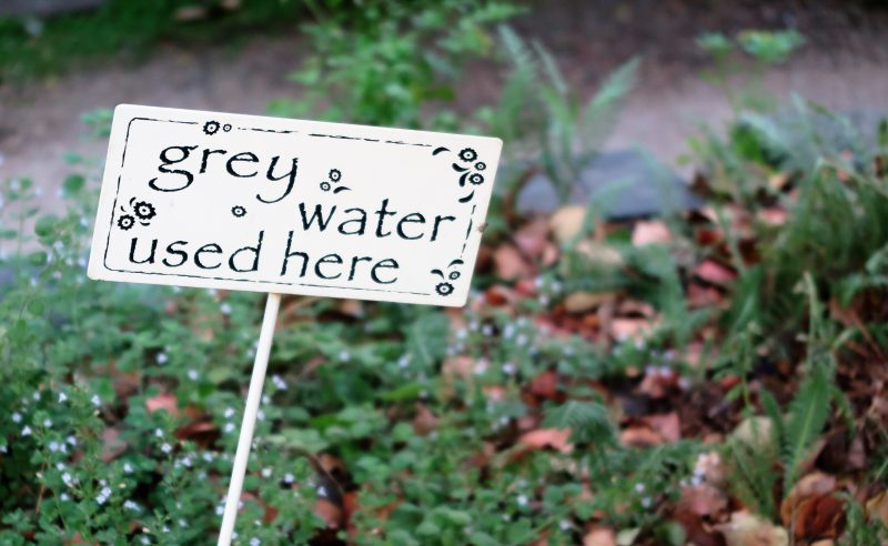 'Grey water' re-used from the house waters the garden