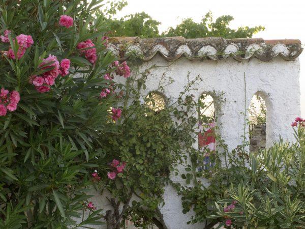 Garden privacy screen in Spain