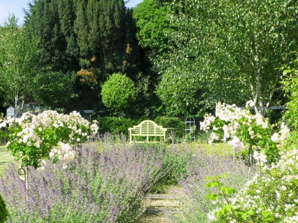 Benches as focal points in smaller gardens