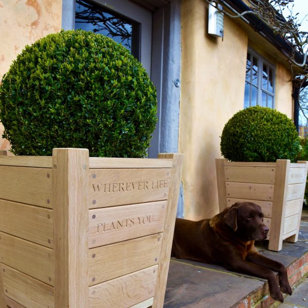 Oak & Rope planters