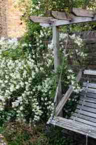 10 Small Garden Planting Ideas That Really Work The Middle Sized Garden Gardening Blog