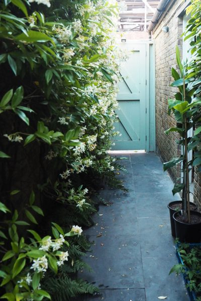Choose scented plants in a garden for entertaining
