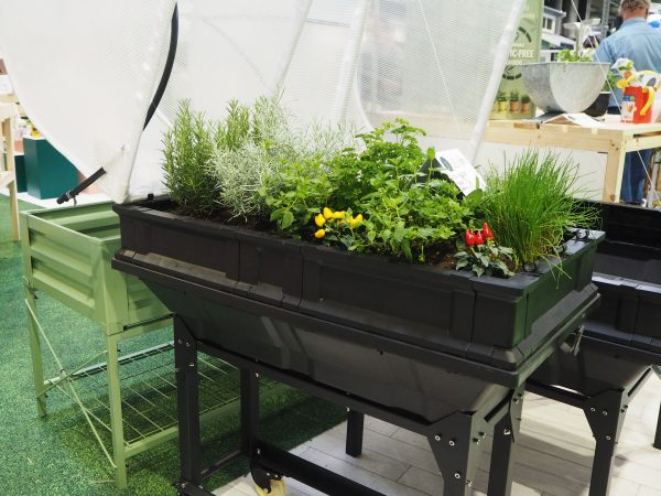 Vegebox, with an easy, lift-off cloche cover