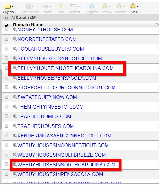 Picking domain name for REI