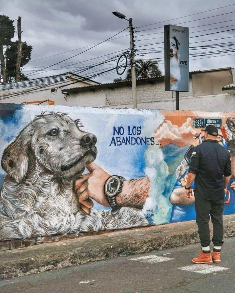 street art for street dogs - don't abandon them