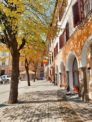Piata Mica in Spring - things to do in Sibiu
