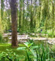 One of the best day trip from Paris - Giverny