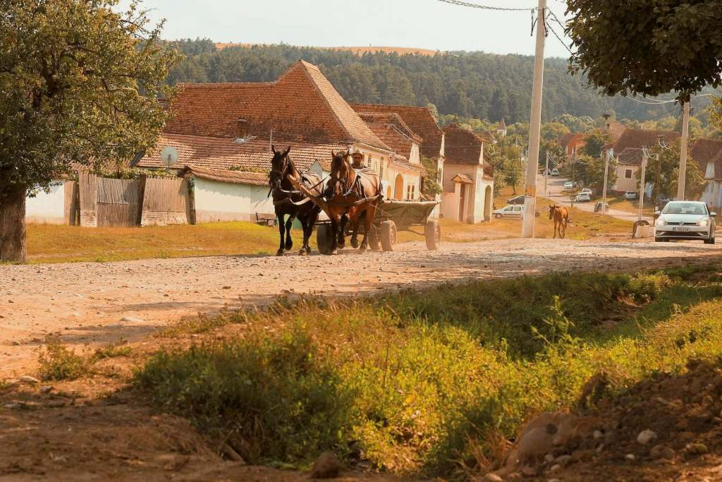 Horse and carriage going down a dirt road in Rural Romania with a car in the background behind them.