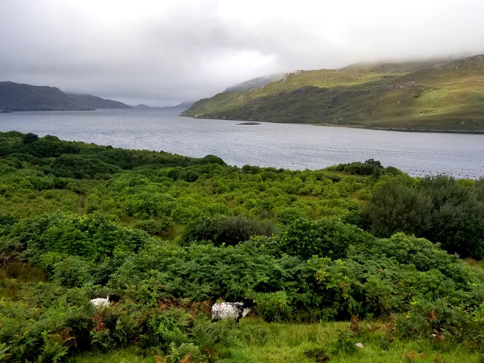 Killary Fjord - Ireland; Connemara National Park, easy day trip from Galway