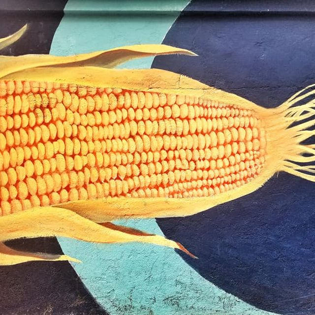 Large husked corn cob street art in Quito, Ecuador