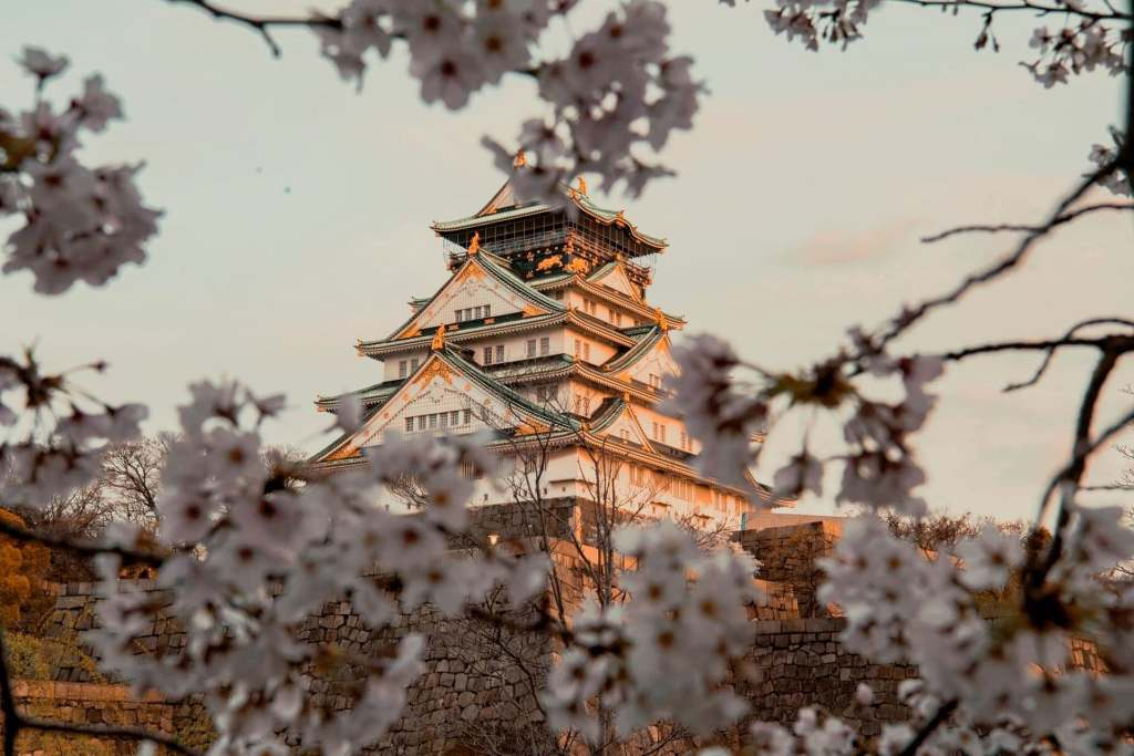 Traditional building in Osaka seen behind cherry blossom branches in bloom, one of the most beautiful virtual tours of Asia.
