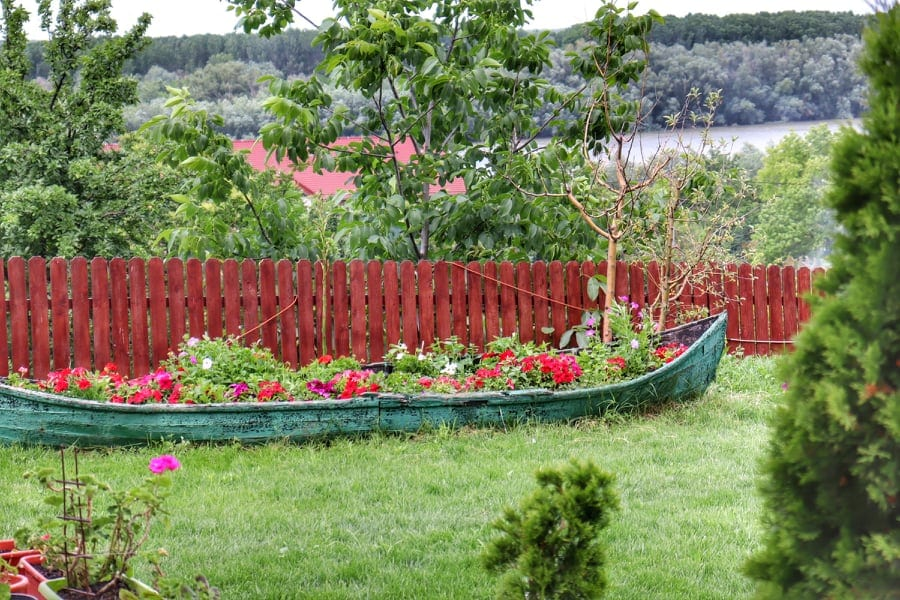 Old kayak filled with flowers in a Romanian garden on the Danube Delta