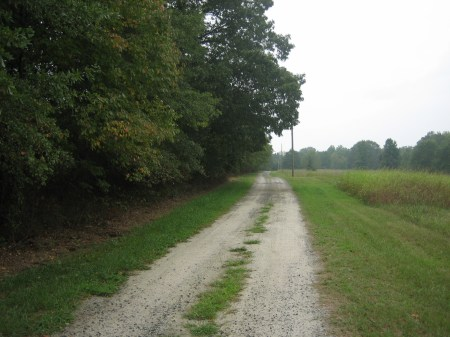 The road to Oma's house, outside Anderson, South Carolina