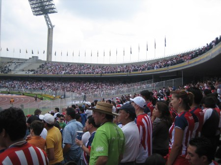 A sea of red-and-white Chivas fans...