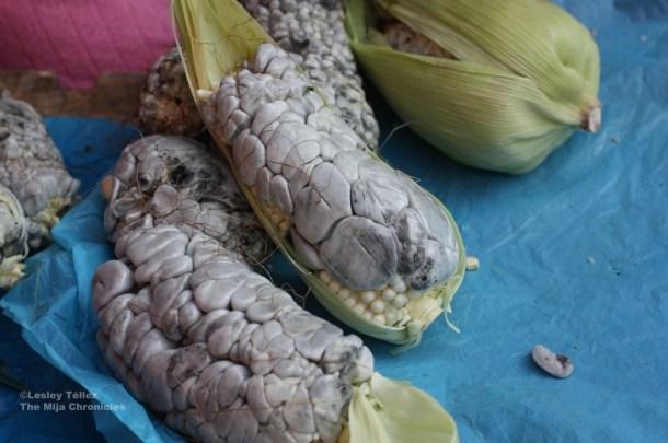 Fresh huitlacoche, still on the cob, also at the Tuesday Santiago Tianguistenco market.