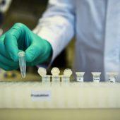 La primera persona en EE. UU. Recibe la vacuna experimental contra el coronavirus