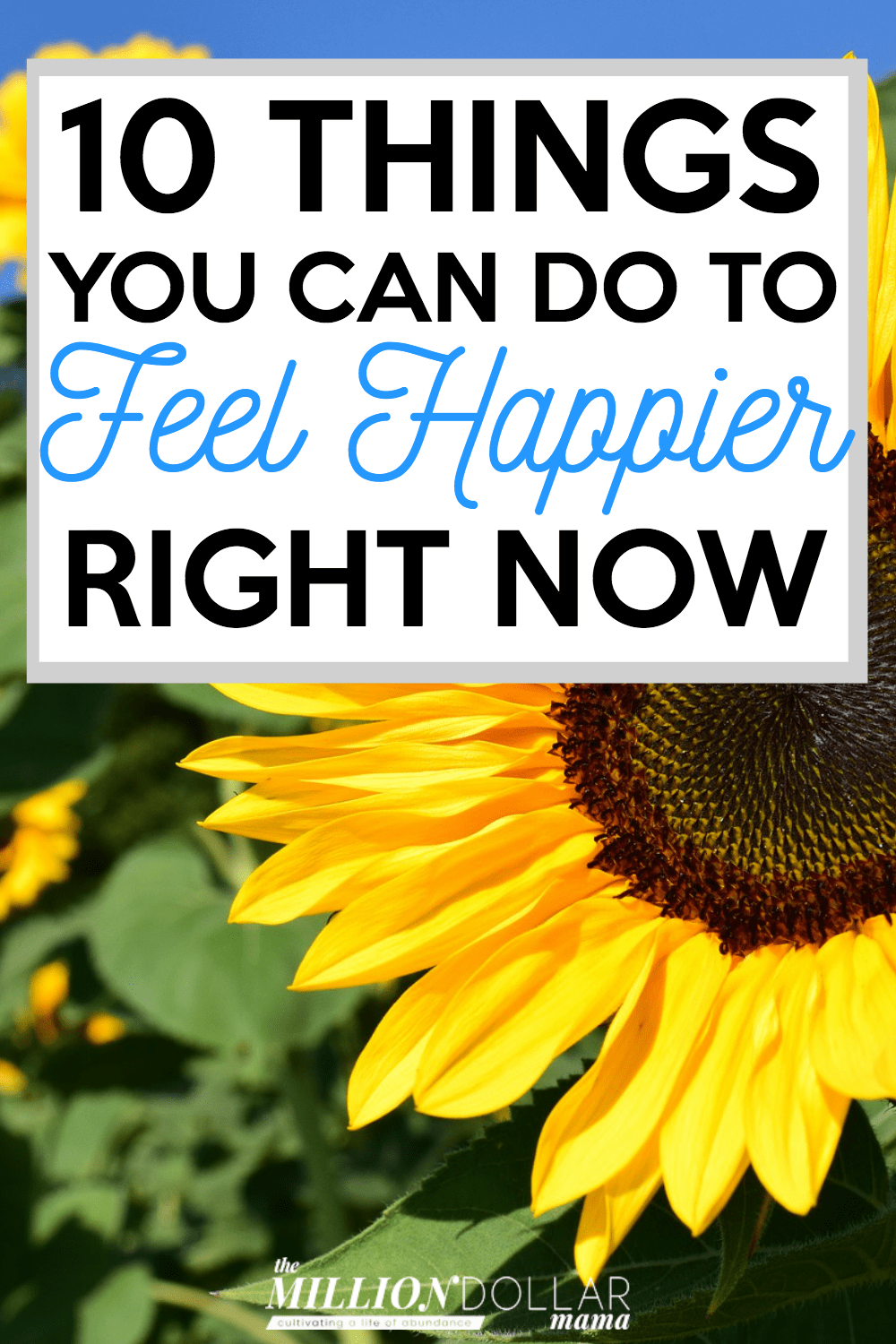 How to feel happy when you're down in the dumps! Click through to find out 10 things you can do to feel happier right now.