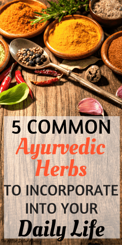 There are so many health benefits of ayurvedic herbs, but a lot of herbs can be difficult to find in the States. These 5 common ayurvedic herbs can be found virtually anywhere and are easy to incorporate into your daily life.