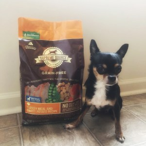 How to Improve Your Dog's Health With Supreme Source® Pet Food