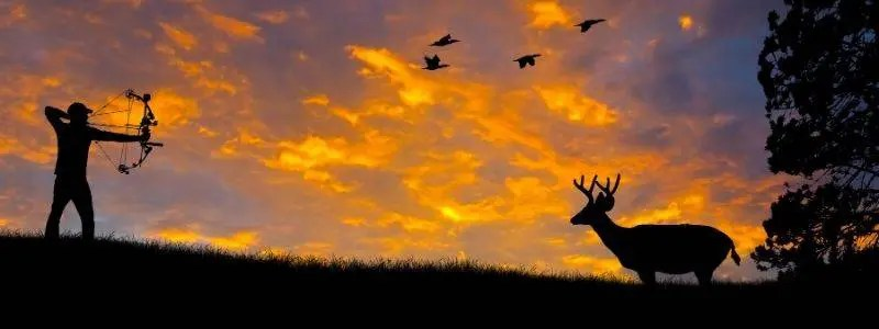 hunting bow 1