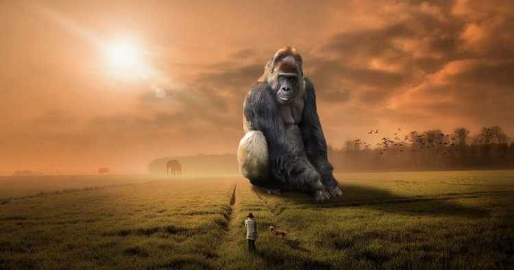 man and dog walking in field with giant gorilla