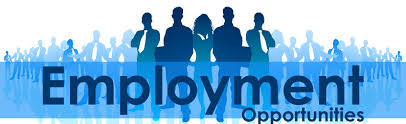 Employment Opportunities with Mindly