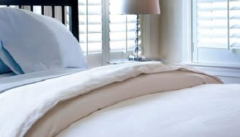 The Mulberry Silk Luxury Comforter