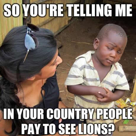 pay to see lions
