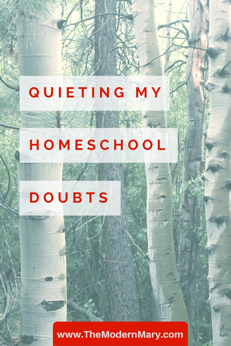 Having doubts about your call to homeschool? Me too!!