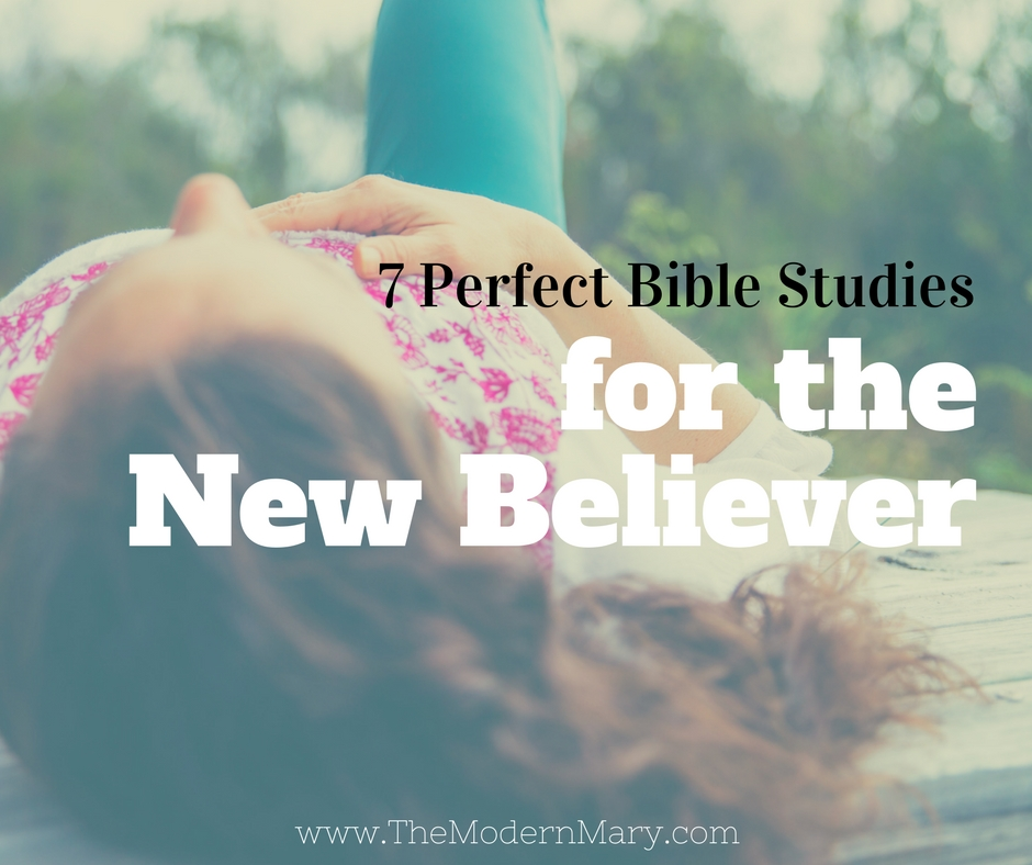 Check out this list of Bible study books for small groups. 7 studies to choose from--perfect for new believers.