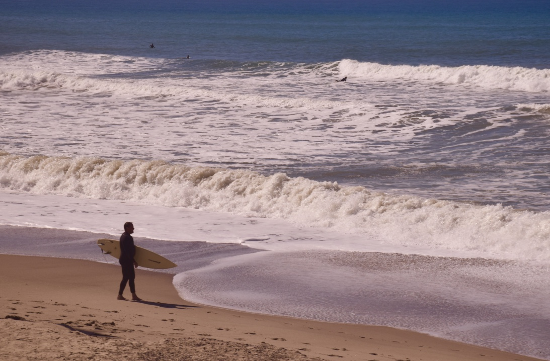 Ocean:Surfer
