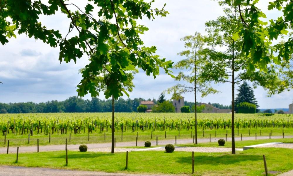Bordeaux Day 1: Wine Among the Ruins In Saint-Émilion