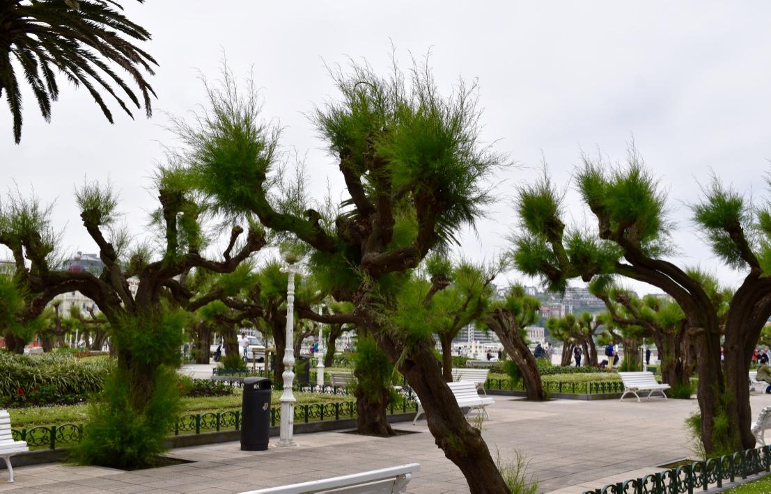 concha-bay-promenade
