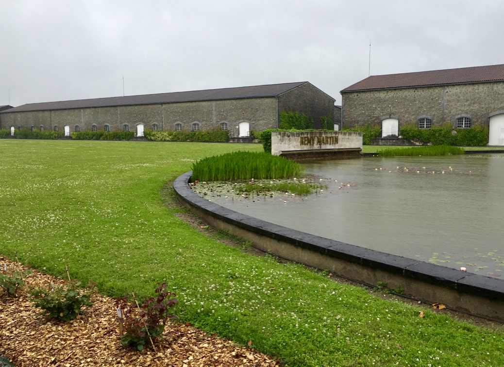 Remy Martin Cellar, Cognac, France, with its low-rise stone buildings and water lily-filled pond.