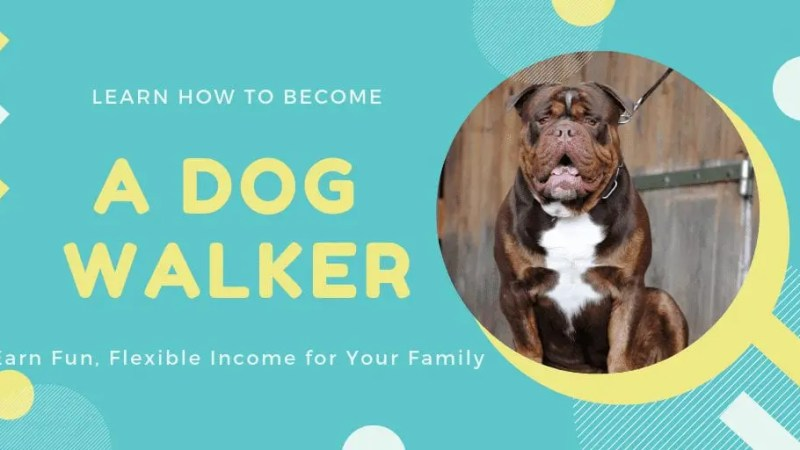 When looking for the right side hustle, it's always important to find something you love. Become a Dog Walker to Earn Fun, Flexible Income for Your Family