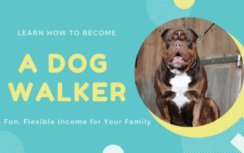 Become a Dog Walker to Earn Fun, Flexible Income for Your Family