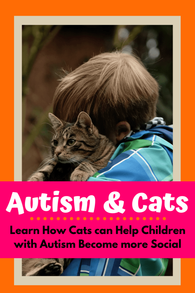 Numerous challenges exist for both autistic children and their parents, but new research has indicated that the interaction between autistic individual and cat has positive benefits for the child. This article investigates more about this relationship.