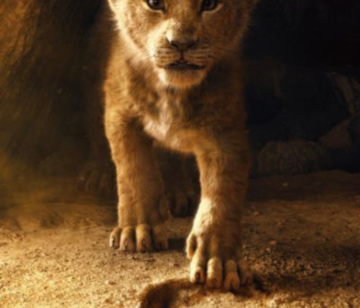 HAKUNA MATATA! Disney's THE LION KING Official Trailer is HERE!