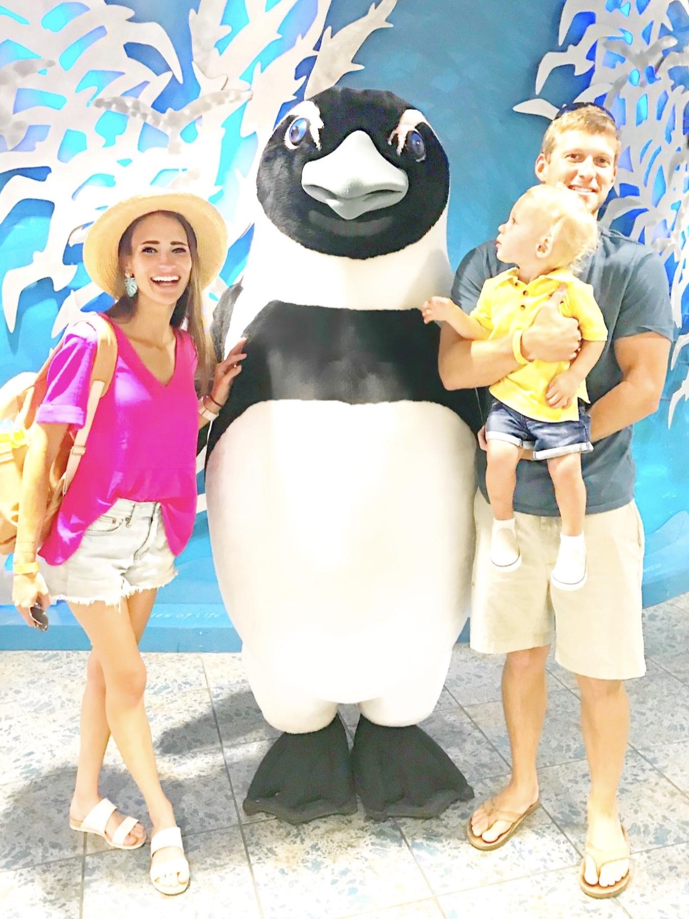 3 Family Fun Activities in Tampa, Florida