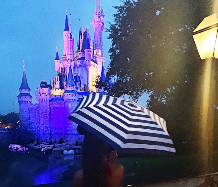 3 Ways to Keep the Magic Going When It Rains at Walt Disney World's Magic Kingdom