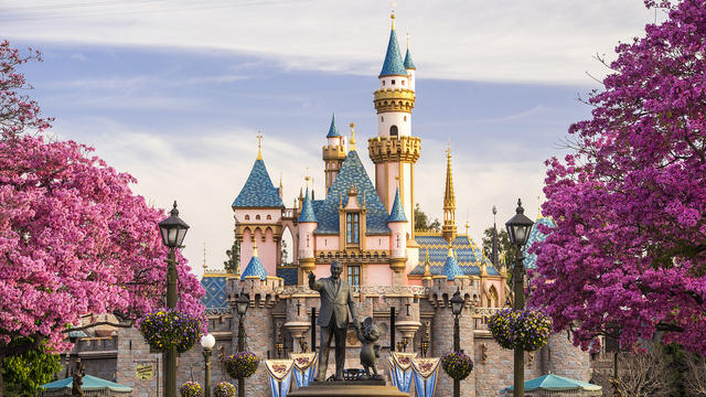 Should I buy Disneyland?