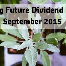 12 month future dividend income