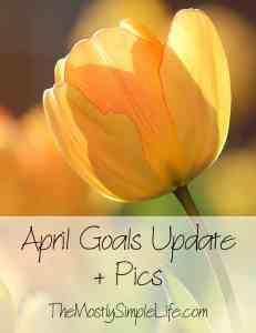April Goals Update + Pics
