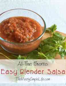 easy blender salsa pic