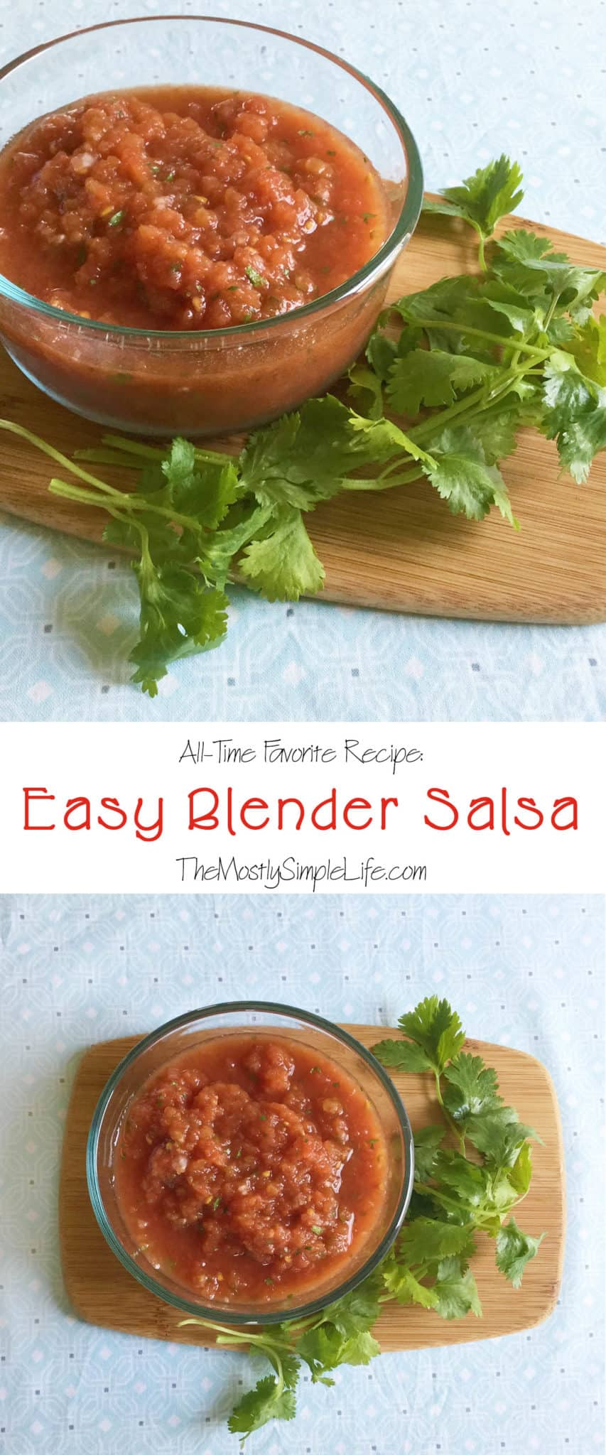 This homemade salsa recipe is my favorite! It's so easy and super quick to make in the blender. It tastes so fresh even though I cheat and use a few canned ingredients. I make it every time people come over and people rave about it!