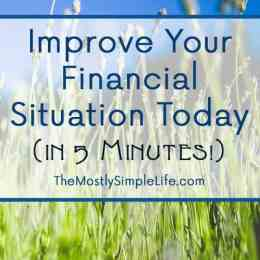 Change Your Financial Situation In 5 Minutes Today The Mostly Simple Life