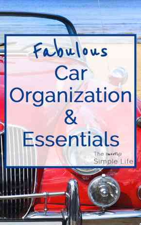 Fabulous Car Organization and Essentials | How to organize your car and what to keep in your car...