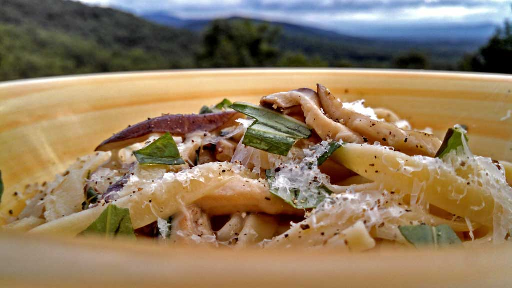 Zesty Shiitake Mushroom Pasta features shiitake mushrooms in a nest of fettuccine noodles flavored with garlic, parmesan cheese, lemon zest and fresh basil.
