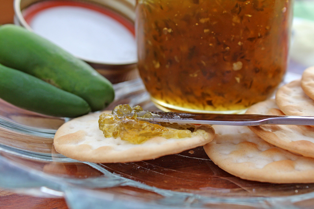 A helpful step-by-step guide on how to make and can jalapeno jelly using water bath canning.   TheMountainKitchen.com