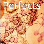 Perfects – Chapter 4 Beginnings